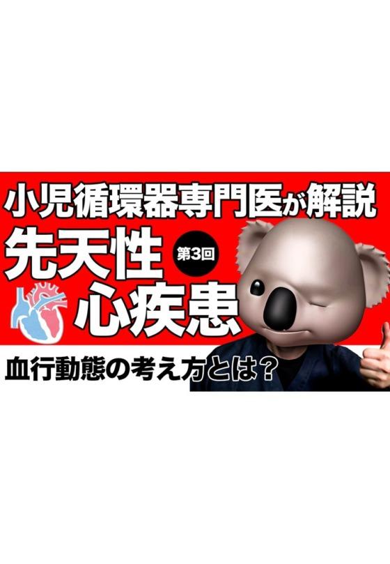 先天性心疾患解説動画【第2,3回】